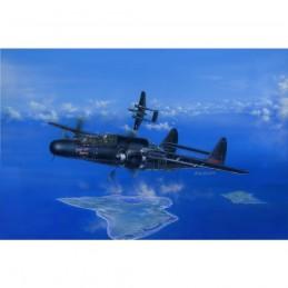 HB81731  P-61B Black Widow...