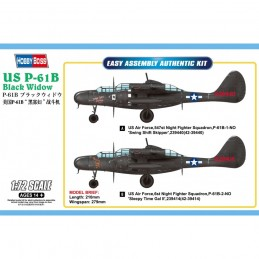 HB87262 US P-61B Black...