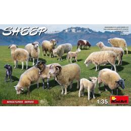 MA38042 Sheep 1/35