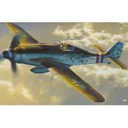DR5503 1/48 FOCKE WULF FW 190D