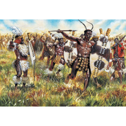 IT6051 ZULU WARRIORS