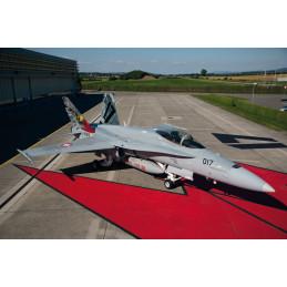 IT1429 F/A-18 HORNET Swiss...