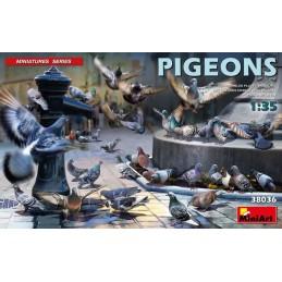 MA380361/35 PIGEONS