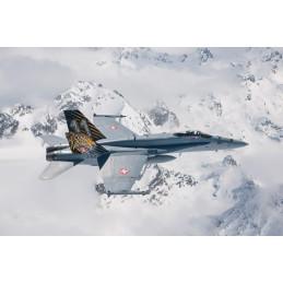 IT1394 F/A-18 HORNET TIGER...