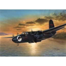 MPM72565 P-70 Nighthawk 1/72